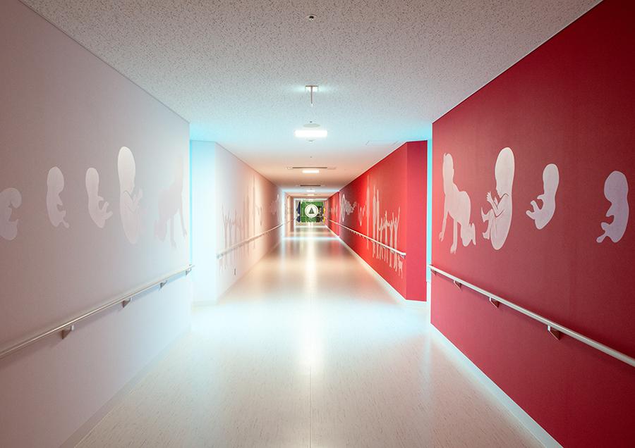 東日本重粒子センター。治療へのアプローチとなる場所に、人間が生まれ、成長し、家族や社会のなかで暮らすという「時」を表現。