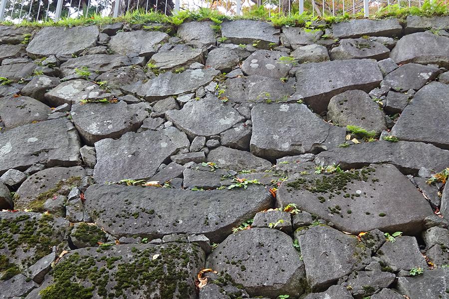 北野博司 #07 盛岡城跡の石垣 双子石を探そう