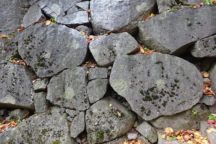 北野博司 #07 双子石が見られる盛岡城跡の石垣