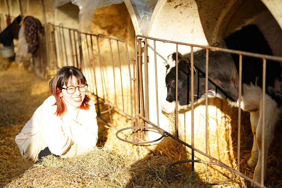 酪農アーティスト、版画家 下山明花さん 子牛と一緒に
